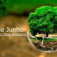 DIA MUNDIAL DO MEIO AMBIENTE, 5 DE JUNHO